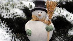 7 Ideas for Kids on Winter Break