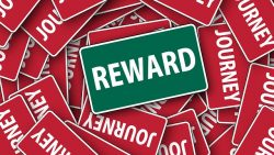 Good Behavior Rewards: Yay or Nay?
