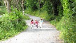 Outdoor Threat this Summer: Ticks!
