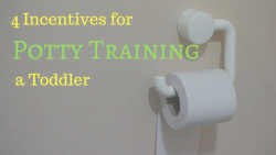 4 Incentives for Potty Training a Toddler